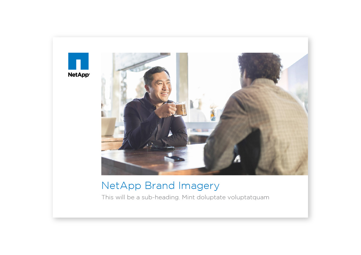 netapp-01